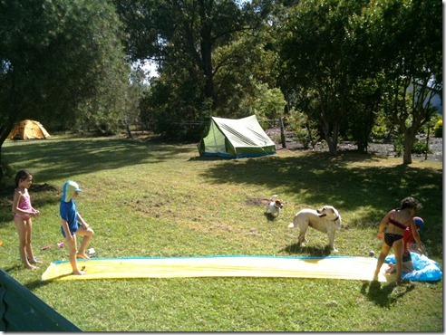 Slip 'n Slide, a aussie backyard favourite